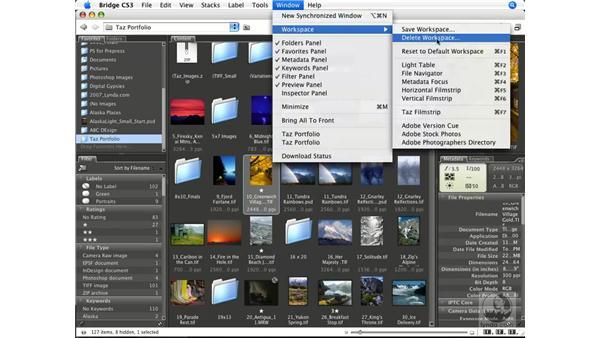 Navigating files and accessing metadata: Photoshop CS3 Color Correction