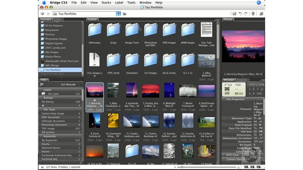 Sorting and labeling: Photoshop CS3 Color Correction