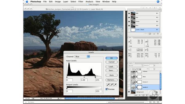 Graphical evaluation: Photoshop CS3 Color Correction