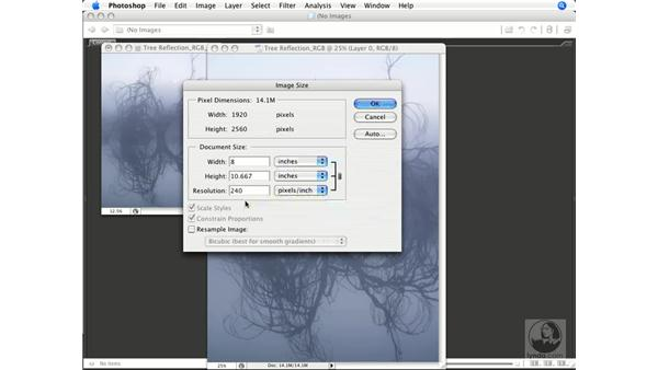 Image dimensions, linear resolution, and mode: Photoshop CS3 Color Correction