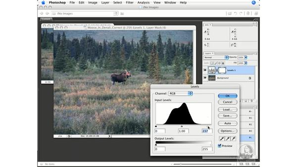 Histogram only: Photoshop CS3 Color Correction