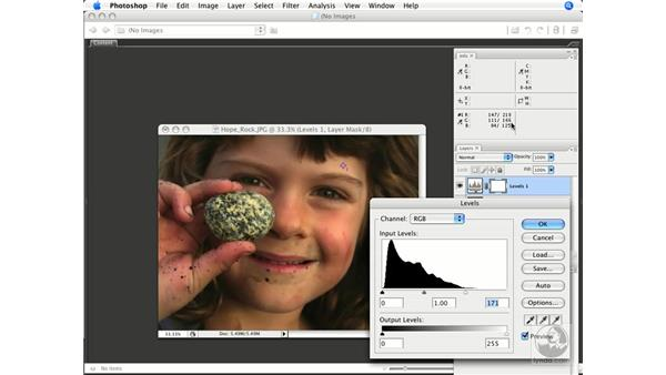 Histogram, Color Sampler, and Info: Photoshop CS3 Color Correction