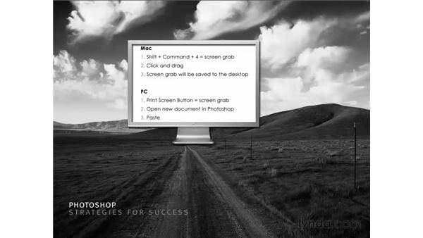 Strategies for success pt. 1: Taking visual snapshots: Photoshop CS3 for Photographers