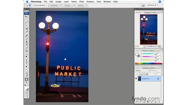 Crop and Resize: Photoshop CS3 for Photographers