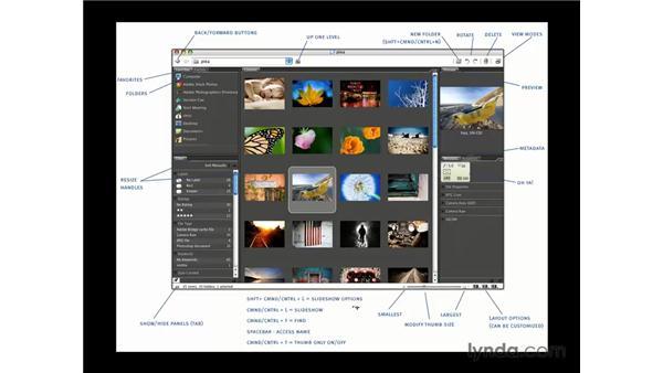 Bridge overview: Photoshop CS3 for Photographers
