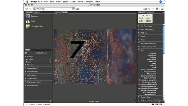 Setting up the workspace: Photoshop CS3 for Photographers