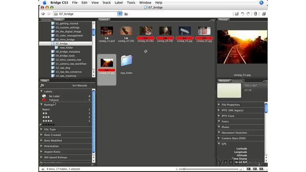 Using Bridge for rating/sorting: Photoshop CS3 for Photographers
