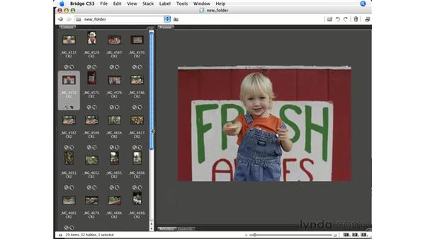 Previewing multiple files: Photoshop CS3 for Photographers