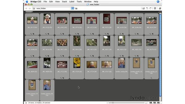 Batch renaming: Photoshop CS3 for Photographers