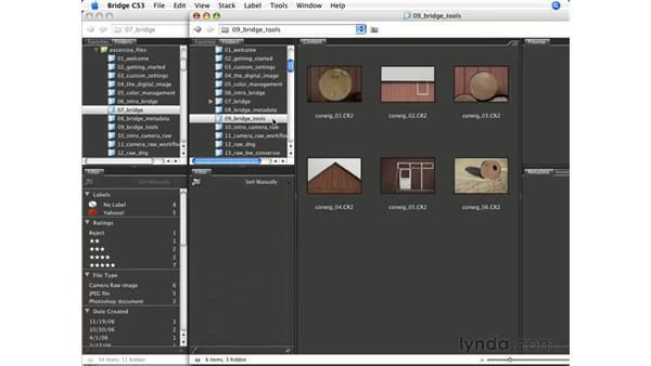The new Bridge window: Photoshop CS3 for Photographers
