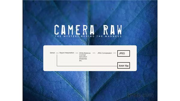 What's the big deal with raw files?: Photoshop CS3 for Photographers