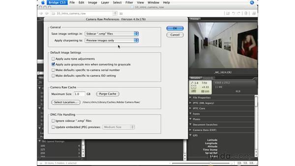 Camera Raw preferences: Photoshop CS3 for Photographers