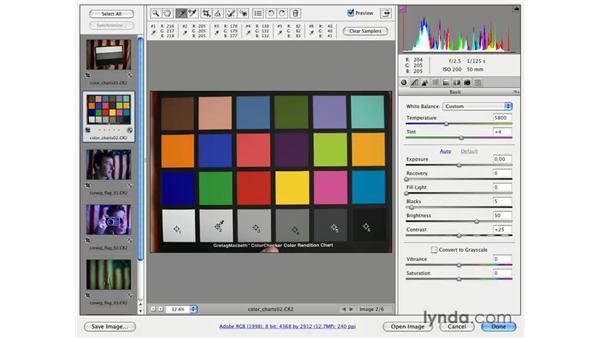 Raw white balancing: Photoshop CS3 for Photographers