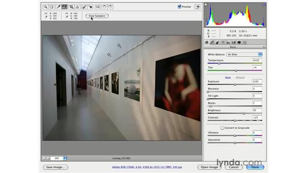 Raw processing workflow: Photoshop CS3 for Photographers
