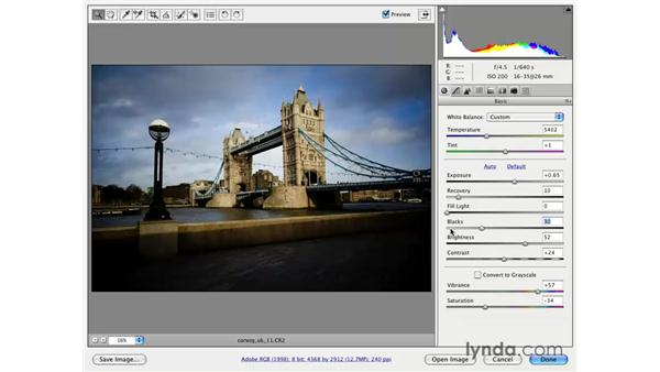 Understanding the Camera Raw histogram: Photoshop CS3 for Photographers