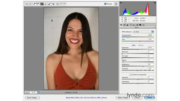 Crop and Straighten: Photoshop CS3 for Photographers