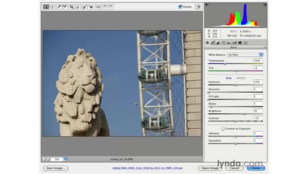 Vertical Straighten: Photoshop CS3 for Photographers