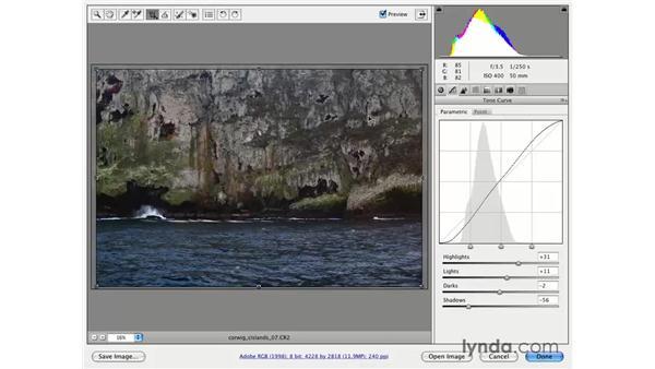 Tone: Photoshop CS3 for Photographers