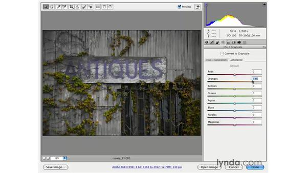 Using Hue, Saturation, and Luminosity for focus: Photoshop CS3 for Photographers