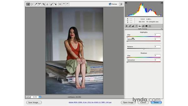 Split toning: Photoshop CS3 for Photographers