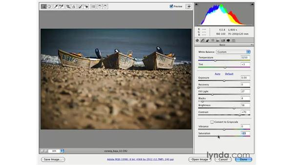 Using Lens Vignette for a weathered look: Photoshop CS3 for Photographers