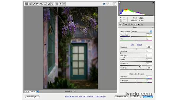 Vibrance: Photoshop CS3 for Photographers