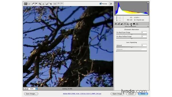 Fixing chromatic aberrations: Photoshop CS3 for Photographers