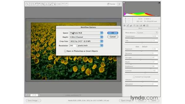 Resize Raw in Camera Raw: Photoshop CS3 for Photographers