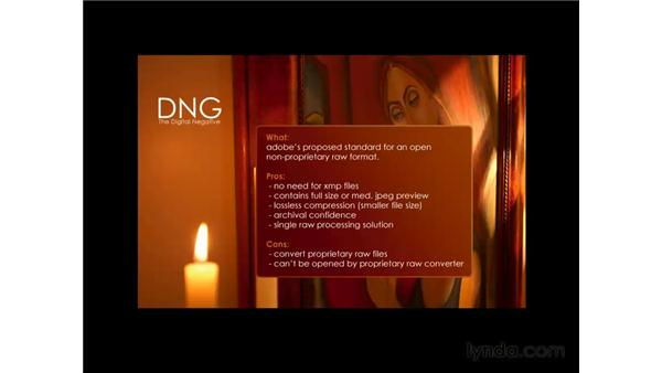 What is the DNG?: Photoshop CS3 for Photographers