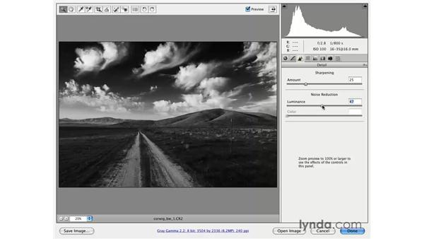 Black-and-white Magic: Photoshop CS3 for Photographers