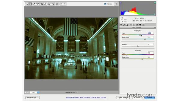 Black and white and split toning: Photoshop CS3 for Photographers