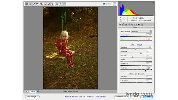 Creative color pt. 1: Nostalgia: Photoshop CS3 for Photographers
