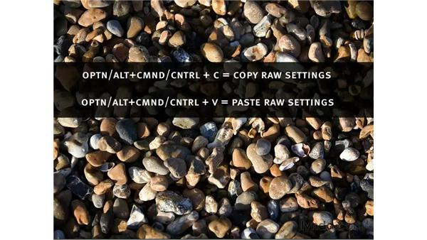 Copy and pasting Camera Raw settings: Photoshop CS3 for Photographers