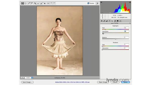 Creative color pt. 2: Soft and gold: Photoshop CS3 for Photographers