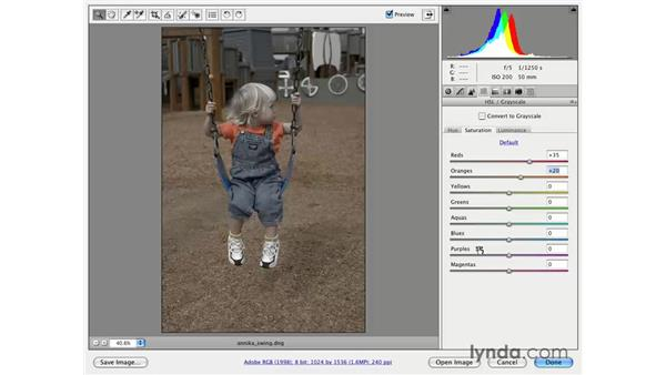 Color emphasis through reduction: Photoshop CS3 for Photographers