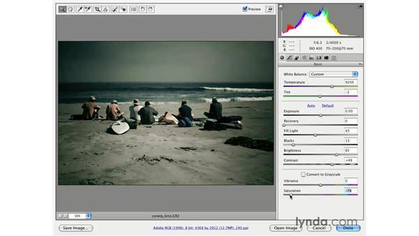Cross-processing: Photoshop CS3 for Photographers