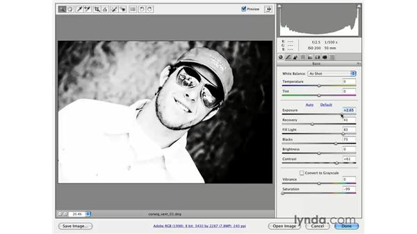 Graphic effect: Photoshop CS3 for Photographers