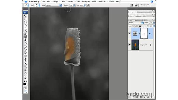 Masking and desaturation: Photoshop CS3 for Photographers