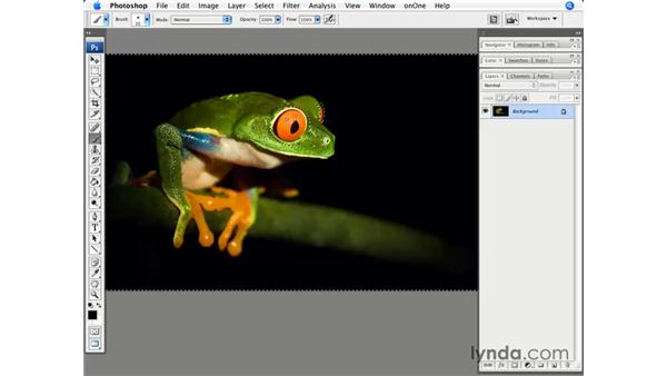 Making quick mask selections: Photoshop CS3 for Photographers