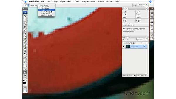 Advanced color correction with eyedroppers: Photoshop CS3 for Photographers