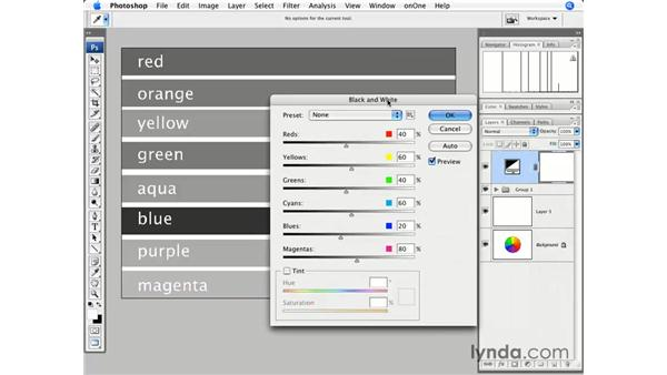 Introducing black-and-white conversion: Photoshop CS3 for Photographers