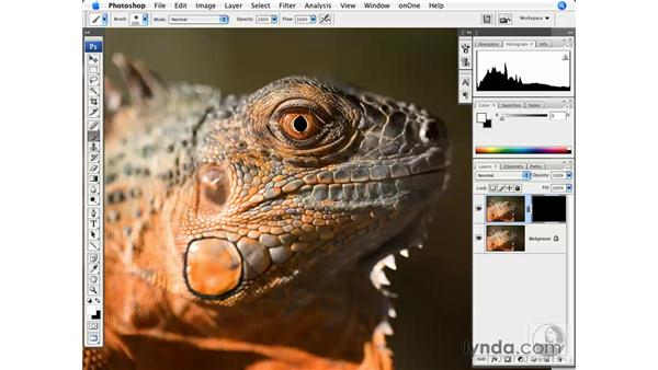 Smart Sharpen and masking: Photoshop CS3 for Photographers