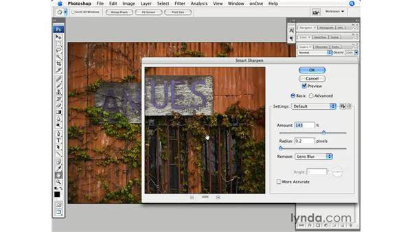 Sharpening and curves for the web: Photoshop CS3 for Photographers