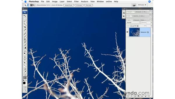 Printing preparation: Photoshop CS3 for Photographers
