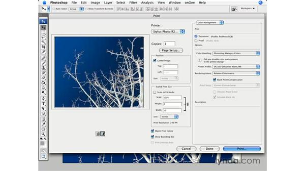 New CS3 print dialog pt. 1: Introduction: Photoshop CS3 for Photographers