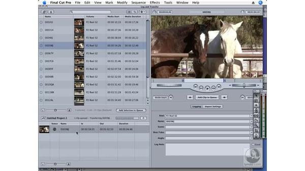 The Log and Transfer window: Final Cut Pro 6 New Features