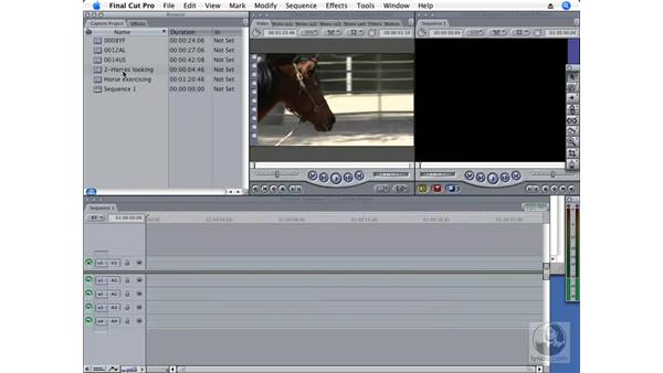 Batch renaming clips: Final Cut Pro 6 New Features