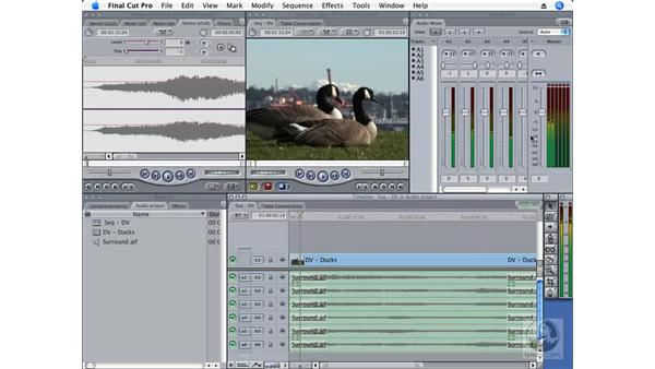 Surround-sound support: Final Cut Pro 6 New Features