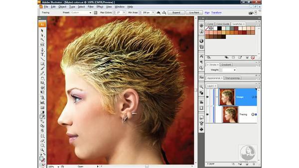 Preparing a Live Trace color palette: Illustrator CS3 One-on-One: Advanced Techniques