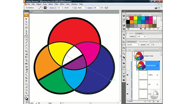 Drawing inside a Live Paint group: Illustrator CS3 One-on-One: Advanced Techniques